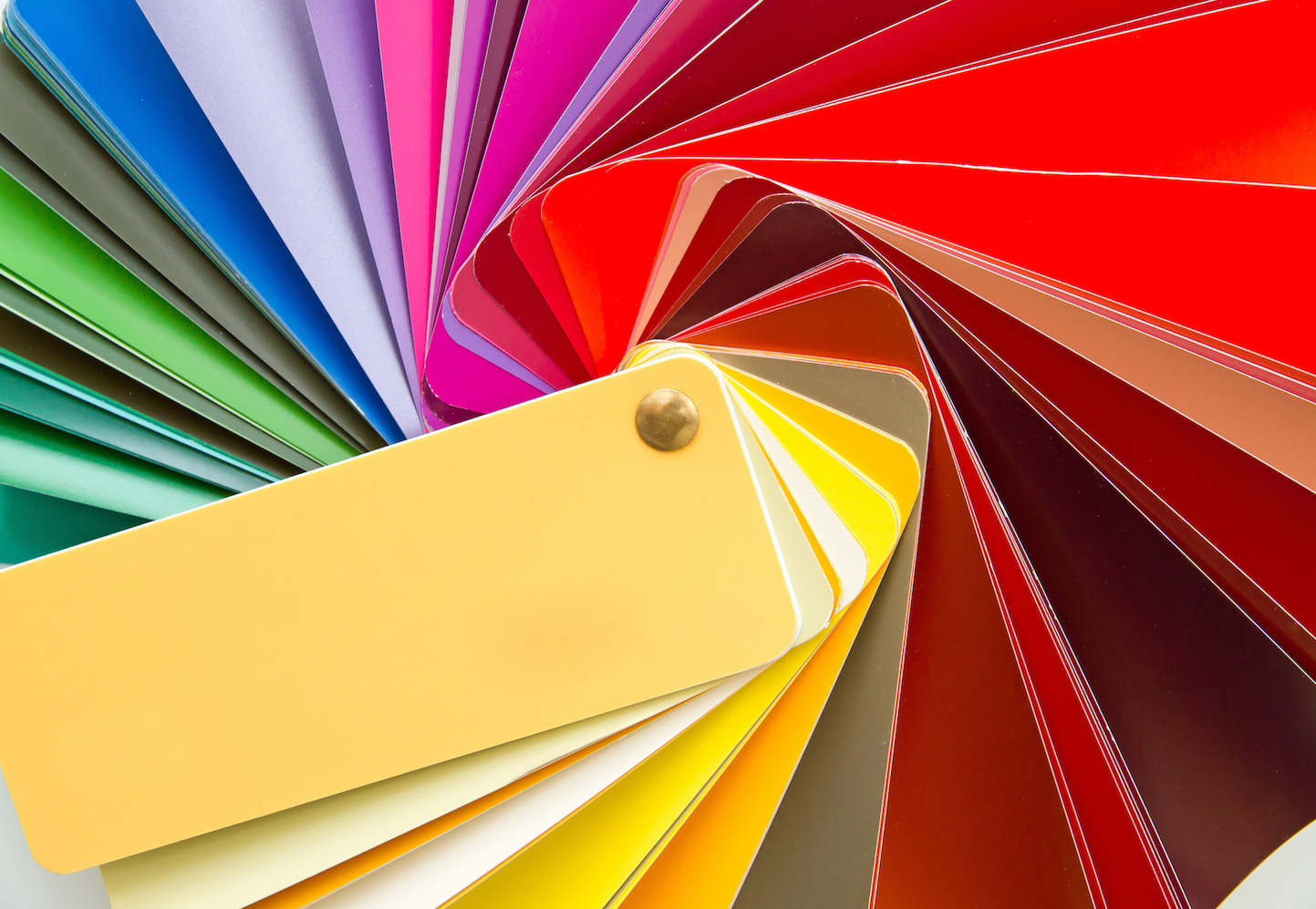 TG-couleurs-bandeau.jpeg